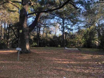 Cayce, Springdale, West Columbia Residential Lots & Land For Sale: 415 Hudson