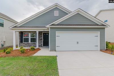 Lexington Single Family Home For Sale: 523 Walking