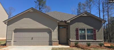 Lexington Single Family Home For Sale: 209 Village View