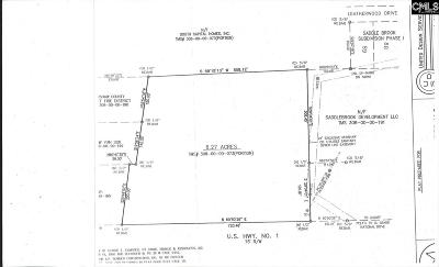 Lugoff Residential Lots & Land For Sale: 1694 Highway 1 S