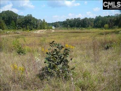 Lugoff Residential Lots & Land For Sale: 1694-2 Highway 1 S
