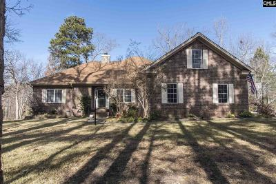 Chapin Single Family Home For Sale: 140 Dutchman Shores