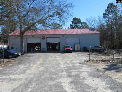 Monetta, Ridge Spring, Wagener, Johnston, Pelion, Newberry, Ward Commercial For Sale: 7731B Edmund