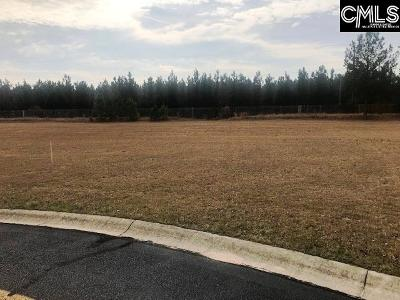 Residential Lots & Land For Sale: 243 Cirrus