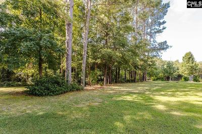 Lugoff Residential Lots & Land For Sale: 1039 McCord Fery