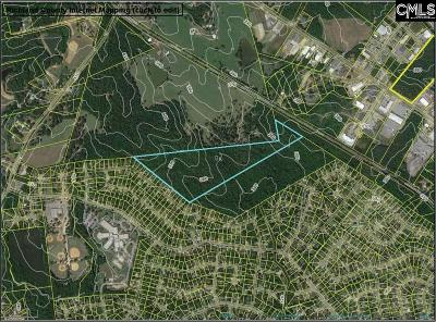 Irmo Residential Lots & Land For Sale: E/S Farming Creek