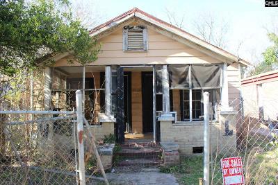 Orangeburg Single Family Home For Sale: 228 Boswell