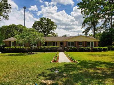 Cayce Single Family Home For Sale: 508 Shady