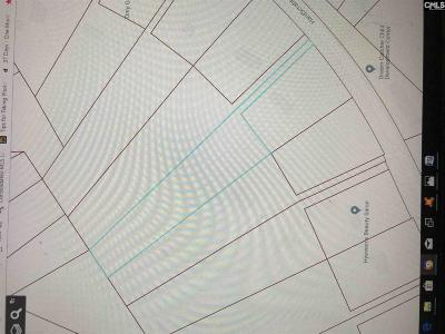 Lexington County, Richland County Residential Lots & Land For Sale: 4119 Hardscrabble