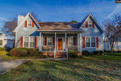 Lexington Single Family Home For Sale: 256 Ashton