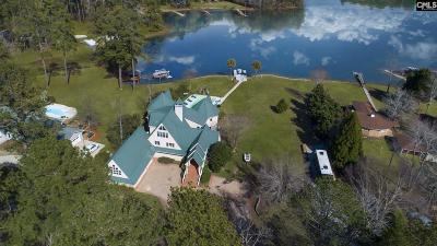 Single Family Home For Sale: 223 Tilden Point