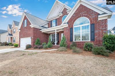 Lexington County Single Family Home For Sale: 317 Bronze