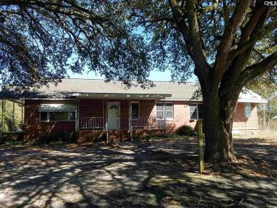 Batesburg Single Family Home For Sale: 6206 Fairview