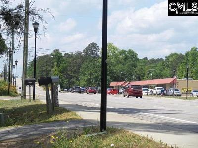 Cayce, Springdale, West Columbia Residential Lots & Land For Sale: 3021 Platt Springs