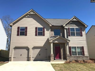 Single Family Home For Sale: 125 Village View