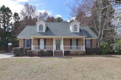 Lexington County, Richland County Single Family Home For Sale: 219 River