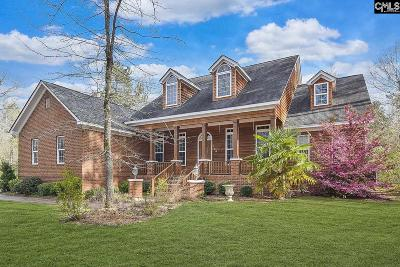 Chapin Single Family Home For Sale: 755 Amicks Ferry