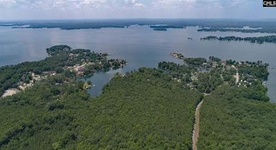 Lexington County Residential Lots & Land For Sale: 349 George Sumner