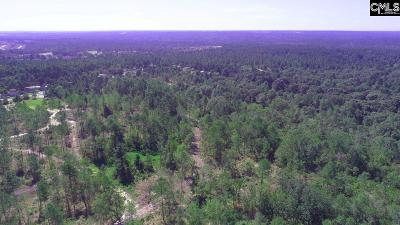 Lexington County Residential Lots & Land For Sale: 1189 Basin Rock