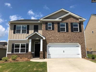 Lexington Single Family Home For Sale: 136 Village View