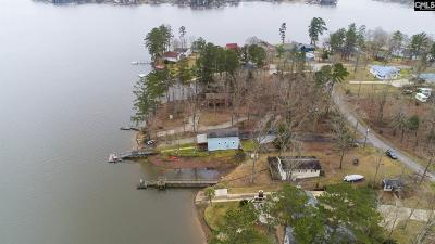 Batesburg, Leesville Single Family Home For Sale: 212 Lakeshore