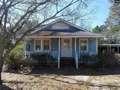 Lexington County Single Family Home For Sale: 250 Shirway
