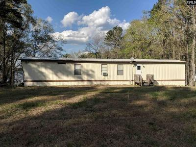 Ridgeway Single Family Home For Sale: 2668 Lake