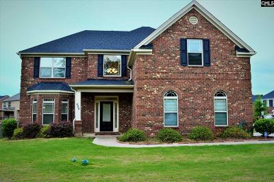 Chapin Single Family Home For Sale: 646 Village Market