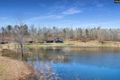 Lexington County Single Family Home For Sale: 1339 Track