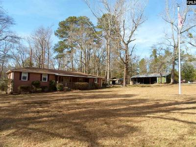 Lexington County, Richland County Single Family Home For Sale: 1134 Calks Ferry