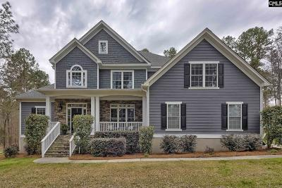 Chapin, Gilbert, Irmo, Lexington, West Columbia Single Family Home For Sale: 806 Indian Fork