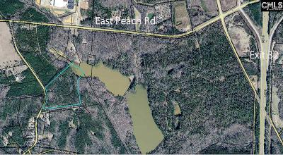 Blythewood, Ridgeway, Winnsboro, Ballentine, Columbia, Eastover, Elgin, Forest Acres, Gadsden, Hopkins Residential Lots & Land For Sale: 364 McCorkle