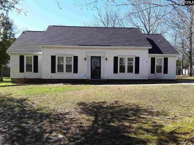 Irmo Single Family Home For Sale: 91 Old Well