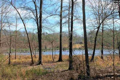 Lexington County, Newberry County, Richland County, Saluda County Residential Lots & Land For Sale: 217 Stevens Creek