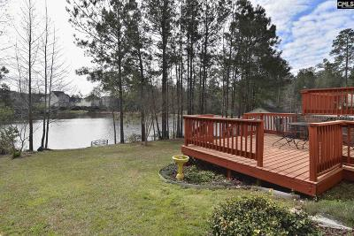 Blythewood Single Family Home For Sale: 161 Summer Pines