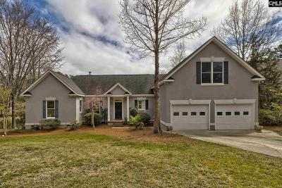 Fairfield County, Lexington County, Richland County Single Family Home For Sale: 203 Buddy Eargle