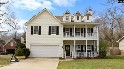 Chapin Single Family Home For Sale: 206 Moyer
