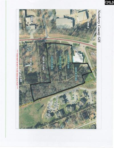 Monetta, Ridge Spring, Wagener, Johnston, Pelion, Newberry, Ward Commercial For Sale: 756 Kendall