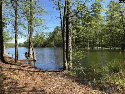 Lexington County, Newberry County, Richland County, Saluda County Residential Lots & Land For Sale: 152 Shinner