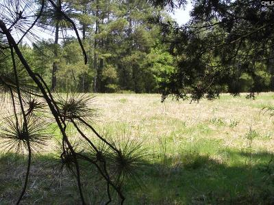 Irmo, Ballentine Residential Lots & Land For Sale: 128 E Jim Koon