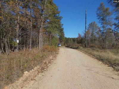 Wateree Hills, Lake Wateree, wateree estates, wateree hills, wateree keys, lake wateree - the woods Residential Lots & Land For Sale: 2141 Methodist Camp Road