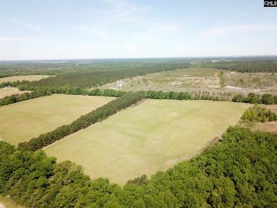 Monetta, Ridge Spring, Wagener, Johnston, Pelion, Newberry, Ward Residential Lots & Land For Sale: SE South Dixie #1