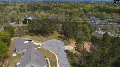 Lexington County Residential Lots & Land For Sale: 360 Redstone