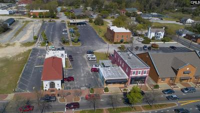 Commercial For Sale: 136 E Main
