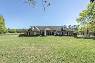 Lexington County Single Family Home For Sale: 370 Zion Hopewell