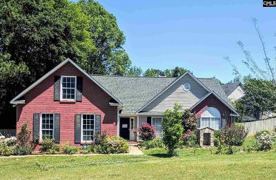 Lexington County Single Family Home For Sale: 423 Whiteford