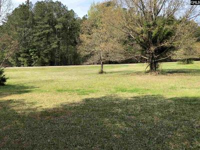 Chapin Single Family Home For Sale: 349 Old Shealy