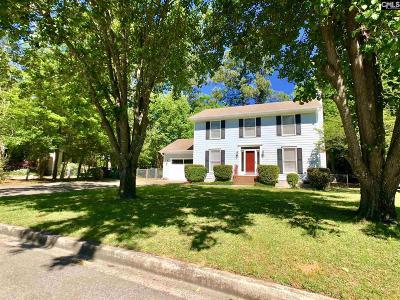 Aiken Single Family Home For Sale: 312 SW Greenwich