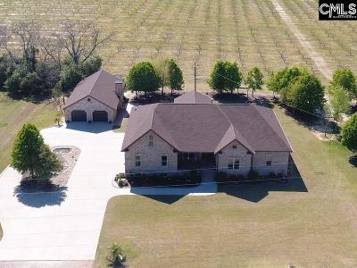 Lexington County Single Family Home For Sale: 155 Oneal Shealy Rd
