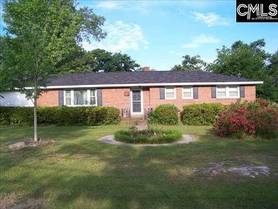 Lexington Single Family Home For Sale: 119 Maple